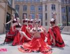 武汉专业舞蹈培训班,单色舞蹈,肚皮舞纱巾演绎教学