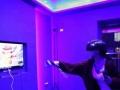 VR虚拟现实游戏体验馆转让 价格面议