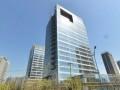 公司求租办公楼的企业看过来,望京核心区域,新项目招租