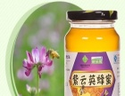 健颐源蜂产品 健颐源蜂产品加盟招商