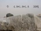 秦岭景观石-雪浪石
