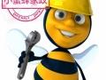 小蜜蜂家政(三河区)