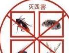 灭虫丨保洁丨开荒丨一次性大扫除丨全市最低价