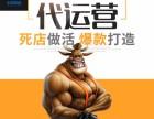 北京淘宝整店运营产品拍照主图详情页设计小视频