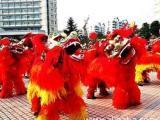 提供专业的军乐队表演,激光舞演出,舞狮表