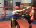 深圳专业泰拳训练 强身搏击俱乐部