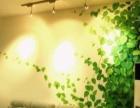 室内外专业_涂鸦_3D手绘墙画壁画_彩绘_文化墙艺