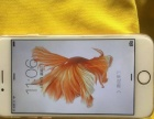 玫瑰金色 苹果iphone 6s 国行 128G