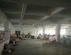 皋埠 人民路生态产业园 厂房 1100平米