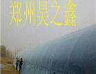 温室大棚好项目昊之鑫公司求客户