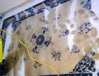 地毯、沙发清洗 水泥、瓷砖地面清洗、擦玻璃、钟点工