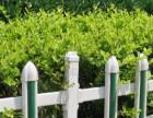 河北草坪护栏-河北草坪锌钢护栏-河北锌钢护栏