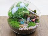 苔藓盆栽植物微景观玻璃瓶 创意礼品透明圆形斜口玻璃花瓶 苔藓瓶