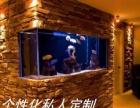龙城水服全太原市范围清洗护理鱼缸