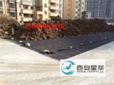 宁夏银川pvc排水板价格塑料排水板批发 厂家直销