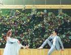 秀尚韩式幸福婚纱照