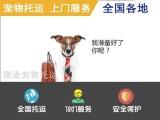 雅途宠物托运,空运 火车 汽车托运,您身边的宠物托运专家
