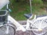 东莞市免费送货长期批发零售二手电动自行车全部超低价600左右超低价卖了要的朋友快