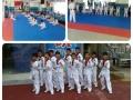 威海优搏国际武道院------少儿跆拳道、女子防身