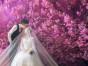 禾一摄影婚纱照