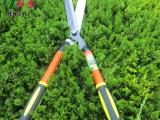 恒誉厂家直销 各种规格篱笆剪 伸缩剪  大力粗枝剪 等五金工具
