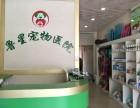 聊城鲁星宠物医院专业医疗团队高水平服务质量