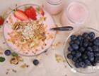 含有乳清高营养的普尔莱克酸奶粉怎么样