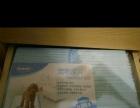 宠物狗狗尿片S号100片狗尿垫加厚 规格:S-小型