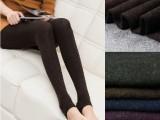秋冬春款 七彩棉新款时尚日韩女一体打底裤袜代理加盟一件代发