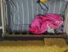 猫爬架 猫床,9成新低价紧急转让!