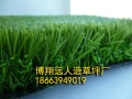 丹东人造草坪生产厂家