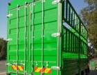 会赚钱的货车,有保险的货车,可以定位的货车。