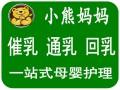 佛山高级催乳师/金牌月嫂/育婴师培训/小熊妈妈最专业