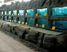 广州海鲜池公司专业定做海鲜制冷鱼池,广州哪里制作海鲜制冷鱼池