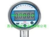 氨用压力表、YBT-254台式精密压力表、DDD-91C-221