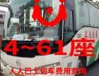 楚雄4~61座旅游包车 会议大巴 企业租车
