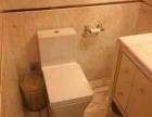 卫生间管道消毒清洗、去除异味、臭味、除飞虫