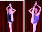 马家堡公益西桥最大的舞蹈学校