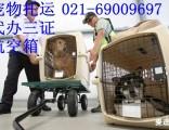 上海宠物物流托运电话国内宠物空运公司电话