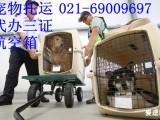 上海宠物托运电话宠物空运价格上海机场航空托运公司