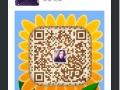 芜湖0基础学韩语 学生小语种技能培训 上元教育精品班