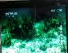 出售新32和旧20吋液晶电视机