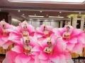 大明星 出租舞蹈演出服、古装、卡通人偶、婚纱礼服