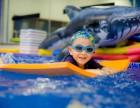 海帆3-4岁悠悠海龟课程