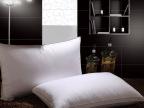 30%白鹅绒优质枕芯单人羽绒枕头单人枕特