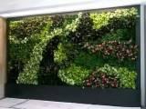 沈阳生态墙-植物墙-绿植墙-墙面绿化