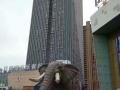 机械大象出租多人互动道具蜂巢迷宫展览供应