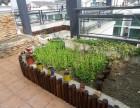 郑州屋顶绿化公司专业防腐木设计施工