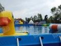 室外儿童水乐园 支架游泳水池鲸鱼岛 水上冲关 充气城堡水滑梯