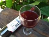 葡萄酒批发 自酿散装岑梅葡萄酒天然零添加 贴牌加工